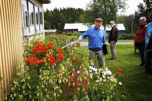 Göte Thorén visar upp sin trädgård. Han jobbar i den nästan varje dag från klockan sju till fem.