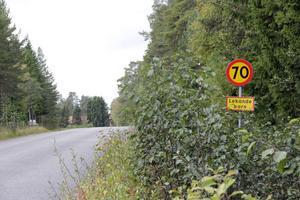 Den som åker från Måga mot Ygsbo har haft 60 km/tim som högsta tillåtna fart ända fram till den här skylten. Då är det dags att öka där barnen leker!
