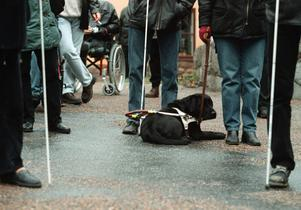 I övriga Sverige klassas Daisy-spelaren som ett hjälpmedel för synskadade och finns oftast tillgängliga för utlåning på bibliotek, skriver Smaverkan Gävleborg.