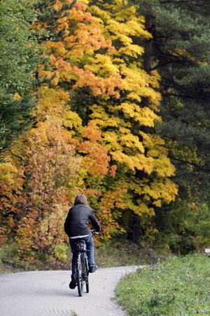 En skolpojke cyklar hem via Baldersvägen i Sundsvall hösten 2008.