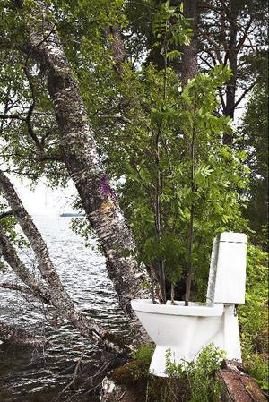 Katarina Franck har låtit en rönn symbolisera en vattenkaskad.