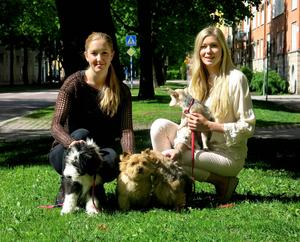 Små hundar och uteliv är inriktningen för Mathilda och Linnéa Sandbergs kombinerade hunddagis och hundsalong.