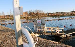 Nu fattas bara att en styrgrupp inom kommunens planberedning trycker på startknappen så startar ett stort samråd, som ska pågå fram till Väsmans Dag i augusti 2013, om framtiden för Väsmanstranden. Mellan strandlinjen med här småbåtshamnen och järnvägen, från ABB-parkering i söder till Roths äng i norr. FOTO BOO ERICSSON