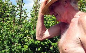 Hallon i massor. Innan Tommy Nilsson gick i pension drev han bageriet Gustafs Bröd. Fortfarande händer det att han jobbar ett par timmar i veckan.