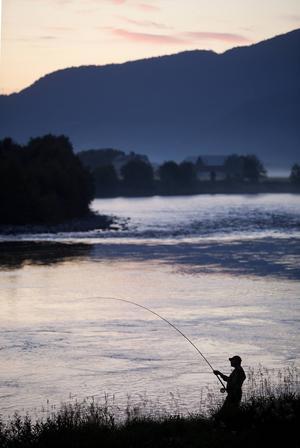 Laxdrillning,Vella….- Silhuett med mycket landskap men samtidigt mycket fiskare tack vare att han friläggs mot vattnet vilket gör att han sticker ut ordentligt.