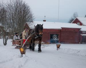 Nina Söderström och ardennern  Euro skjutsade barn och vuxna runt byn.