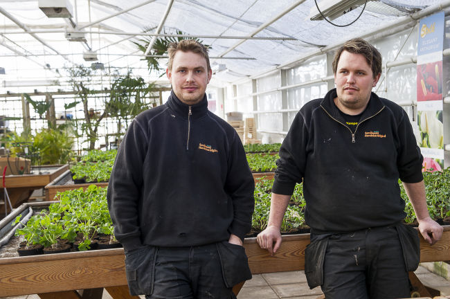 nya sundåsens handelsträdgård