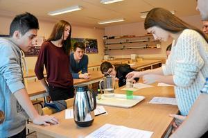 Visar vägen. Amila Sakic, som går andra året på Lindeskolan, hjälper niorna med en labbuppgift.