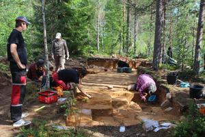Platsen vid Ora Älv där utgrävningarna pågått under två säsonger.
