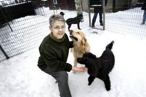 Anita Lind är Årets företagsamma kvinna, enligt Centerkvinnorna i Gävleborg. Här leker hon med hundarna Amigo och Fozz.