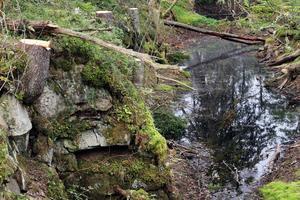 I området finns 20 gruvhål, var av fyra riktigt stora och vattenfyllda.