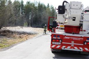 När brandkåren kom till Stöttingvägen var gräsbranden redan släckt.