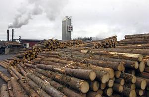 Nordanå Trä AB i Alfta är ett av Sveriges ledande sågverk inom kortlängdsproduktion.