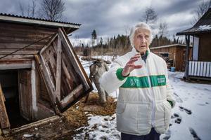 Under vintern har 90-åriga Syster Söderberg balanserat fram på något som mest liknat en isbana. Nu har det tinat och tomten är långt ifrån vad den var en gång.