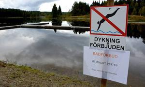 Badvattnet i Torsviken har åter försämrats, men än är det inte aktuellt att göra som i fjol (bilden) och avråda från bad.