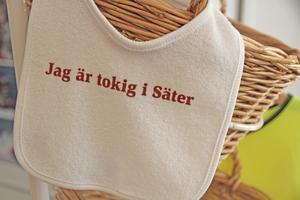 De råder delade meningar om Säter kommuns slogan. Den har blivit både prisad och JO-anmäld.