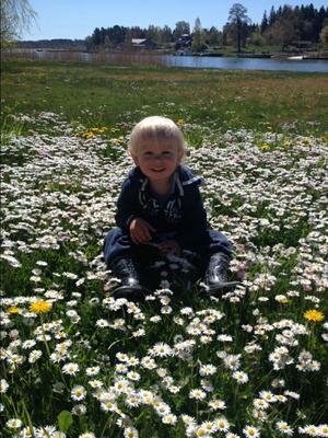 En bild från Blidö på barnbarnet Lucas 2 år. Foto: Janne Levander