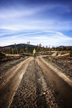 1.    Skogshandläggare Malin Sahlin jobbar för att bevara Sveriges hotade skogar.
