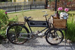 Ulla letade länge efter en cykel till trädgården.