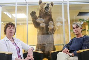 Härjedalens kommunalråd Gunilla Zetterström Bäcke (S) och vice kommunalråd Anna-Lena Andersson (S) vill inte ha något Stornorrland och är beredd att släppa Jämtland om det skulle behövas.