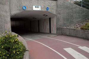 Tunnel. Under trygghetsvandringen kring stationen i Tierp pekades gångtunneln under järnvägen ut som en plats där det behövs bättre belysning.