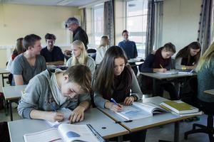Studien finns nu även som bok; Ord på prov: en studie av ordförståelse i högskoleprovet. Foto: Berit Roald / TT