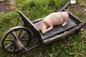Söndag. Den lilla grisen får äntligen ta en tupplur på skottkärran.