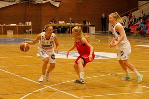 Det blev fyra poäng, åtta returer och två assist för Elisabeth Landsten i matchen mot Uppsala.