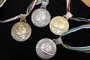 Fyra medaljer blev det för familjen Jonsson/Ekholm på VM i Pyeong Chang, Sydkorea. Tre för Helena och en för David.