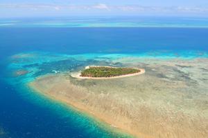 Det stora Barriärrevets hälsa har försämrats.