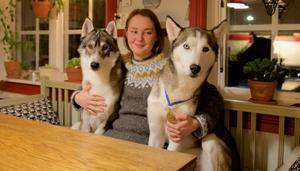 – Jag och hundarna har inte så mycket liv och identitet utanför det här med hundsporten. Det är det här livet har handlat om i ett helt år, säger nyblivna guldmedaljören Tova-Liza Willenfeldt som  satsar för att komma med i  VM i Sveg nästa år.