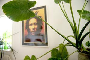 I lägenheten finns gott om gröna växter.