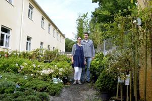 Växtkraft. Diana och Martin van der Burg säljer blommor och växter på Bryggeriet i väntan på att deras handelsträdgård står färdig.