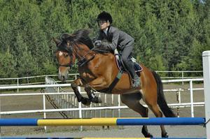 Irma Karlsson – Santiago vann Grand prix, medelsvår A, för C-ponny vid helgens tävlingar på Strömsholm.