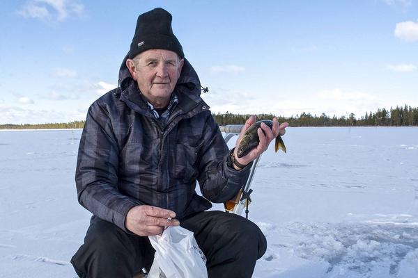 Tord Sundemyr från Bjursås drog upp några fina abborrar.