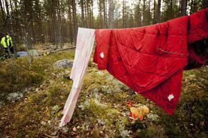 Övergivna sängkläder hänger på tvättlinor mellan träden.