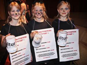 Hur bra tyckte du vi var? Pengarna som Lea Brandt, Agnes Roos och Tova Olhsson samlade in går till dansarna på Kulturskolan.