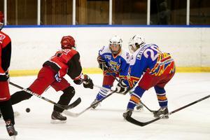 Ludvika Hockey, i blå tröjor, visade sig vara lite för bra för hemmalaget SHC, när klubbarnas 13-14-åringar möttes.