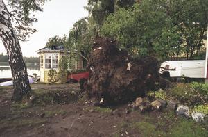 Förödelsen var stor, men lyckligtvis skadades ingen i det kraftiga ovädret.