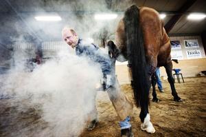 John Forbord från Alnö varmskodde Mira i en prestigefylld tävling mellan hovslagare i går på Kungsnäs. Lukten av bränt ben fyllde lokalen men merparten av hästarna brydde sig inte om odören.