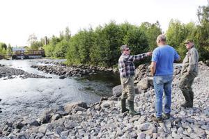 Laxodlaren Bengt Ångström, till vänster, diskuterar här med konsulterna Jan Lundstedt och Christer Örn om hur överfallsdammen ska läggas.