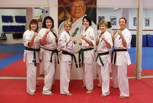 Karin Holmbäck, Elisabeth Almqvist, Catarina Hedlund, Annika Norlander, Gabriella Stjerneklev och Veronica Liljeroth har blivit ett sammansvetsat gäng genom karaten. Här poserar de framför bilden av Sosai Masutatsu Oyama, grundaren av kyokushin karate.