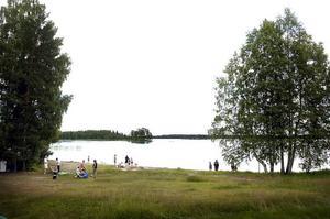 Rent vatten. Sandviken Energi har tagit prover på Öjarens ytvatten och kunnat konstatera att den fruktade bakterien som Östersunds dricksvatten drabbats av inte finns i Sandvikens dricksvatten.