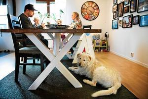 När familjen Lindnord gör saker tillsammans trivs den adopterade hunden Arthur som bäst.