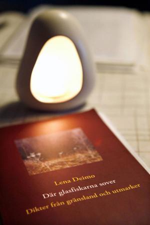 Boken har släppts via Books on demand, där boken trycks när någon beställer den.
