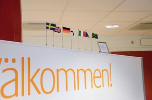 Visar språkkunkap. I receptionen på Smile står flaggor som representerar de språk som personalen kan prata. När Bodil nu slutat har Tanzanias flagga fått plockas ner, det finns inte längre någon på arbetsplatsen som kan prata swahili.
