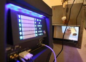 Den nya digitala projektorn på Svea bio. Bäst blir effekten längst fram, berättar John Moberg, som sköter bion i Söderhamn.