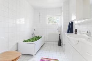 "Sticker ut. Paprika i badkaret, paprika på sängen, paprika i tvättmaskinen. ""Paprikahuset"" i Saltsjöbaden lockade stort intresse ifjol."