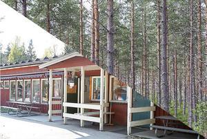 Majoriteten utreder om det går att sälja delar av kommunens skogsbestånd för att finansiera renovering av förskolor.
