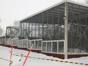 Eva Bjärud är tveksam till att fågelvoljärerna kommer att byggas upp igen.